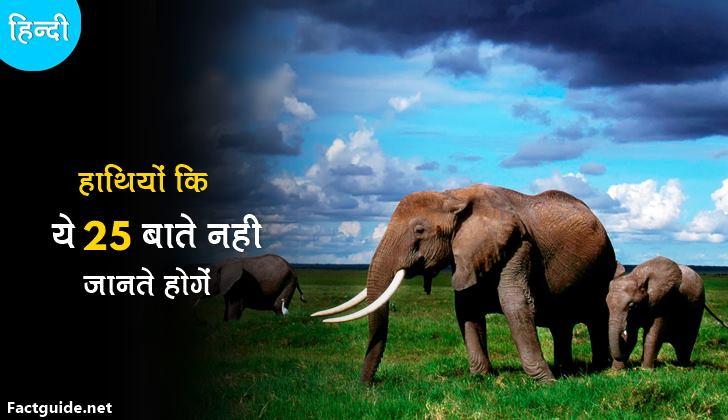 हाथी के बारे में 25 रोचक तथ्य | Elephant facts in hindi