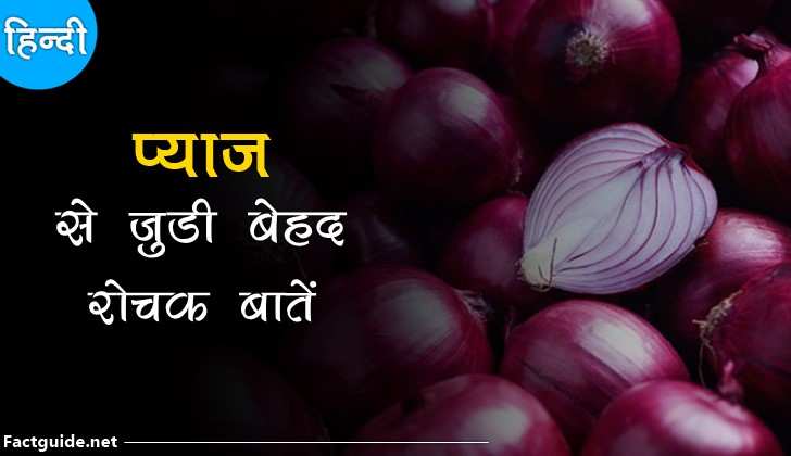 onion facts in hindi