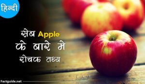 apple fruit facts in hindi