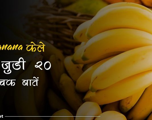 banana facts in hindi