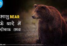 bear facts in hindi