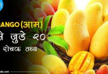 mango facts in hindi