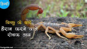 scorpion facts in hindi