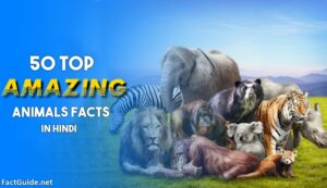 animal facts in hindi