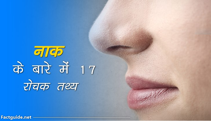 नाक के बारे में 17 रोचक तथ्य |  Nose Facts In hindi