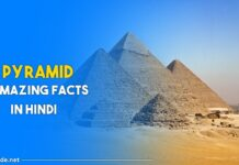 pyramid facts in hindi