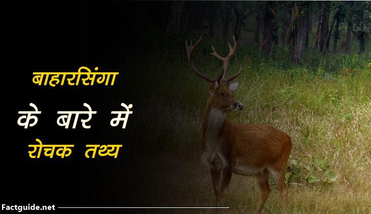 barasingha facts In hindi