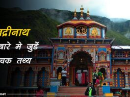 badrinath facts in hindi