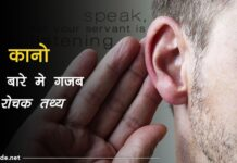ear facts in hindi