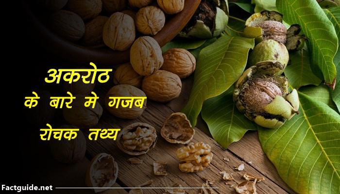 अखरोट के बारे में 15 रोचक तथ्य |Walnut Facts In Hindi