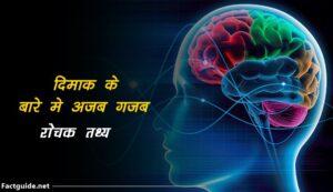 amazing brain facts in hindi