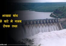 bhakra nangal dam facts in hindi