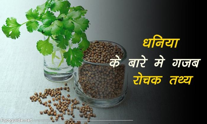 coriander information in hindi