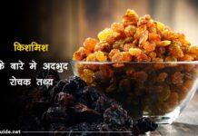 raisins facts in hindi