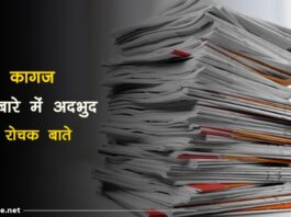 paper facts in hindi