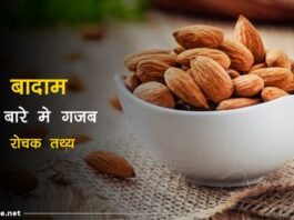Almond facts in hindi