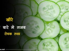 Cucumber facts in hindi