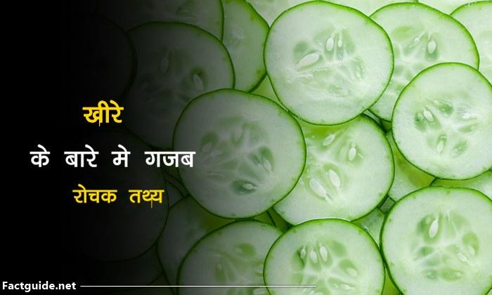 खीरे के बारे में 21 रोचक बाते | Cucumber facts In Hindi