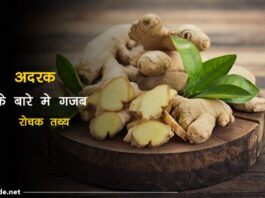 ginger facts in hindi