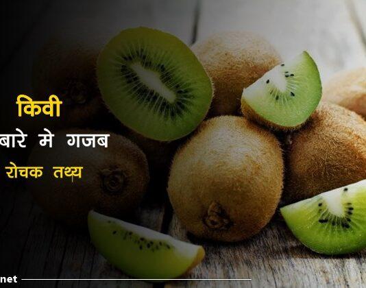 Kiwi fruit facts in hindi