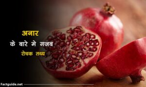 Pomegranate Facts in Hindi