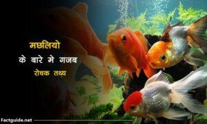 fish facts in hindi